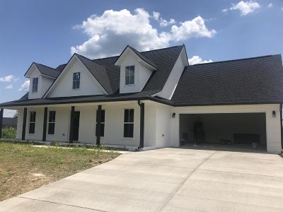 Marshall County Single Family Home For Sale: 5217 McKinnley Dr