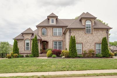 Spring Hill Single Family Home For Sale: 2075 Autumn Ridge Way