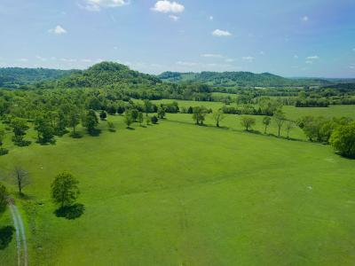 Rutherford County Residential Lots & Land For Sale: 10107 Highway 269 Bell Buckle Rd