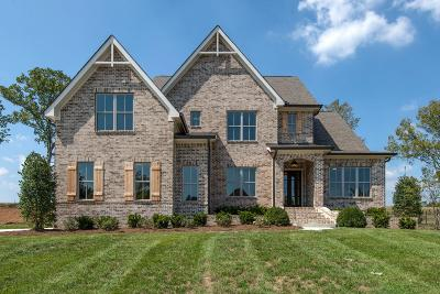 Nolensville Single Family Home For Sale: 104 Hadley Reserve Ct *lot 2*