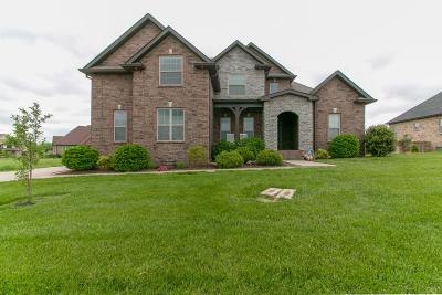 Clarksville Single Family Home For Sale: 212 Hutchins Camp Terrace