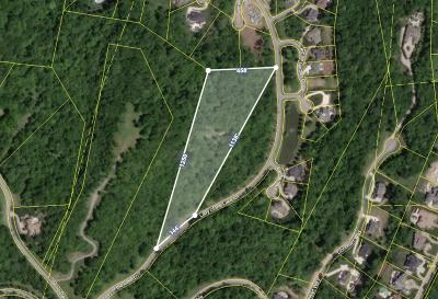 Franklin Residential Lots & Land For Sale: 331 Lady Of The Lake Lane