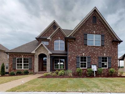 Mount Juliet Single Family Home For Sale: 607 Montrose Dr.#313