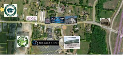 Mount Juliet Residential Lots & Land For Sale: 8924 Stewarts Ferry Pike