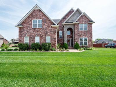 Clarksville Single Family Home For Sale: 3133 Randle Brothers Ln