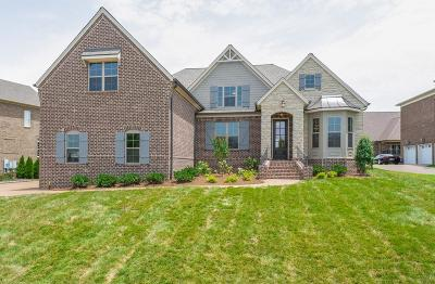 Hendersonville Single Family Home Under Contract - Not Showing: 119 Flintshire Ln