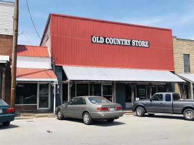 Sumner County Commercial For Sale: 1043 Park St