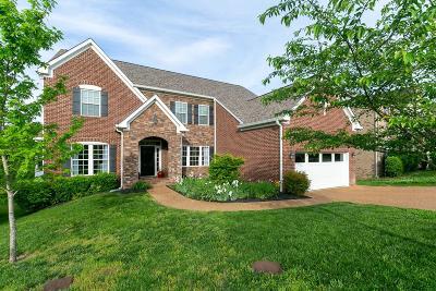 Mount Juliet Single Family Home For Sale: 269 Cobblestone Lndg