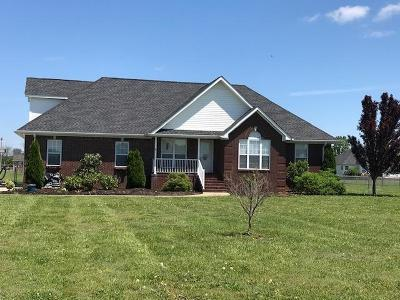 Marshall County Single Family Home For Sale: 1996 Overland Dr