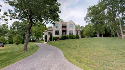Franklin Single Family Home For Sale: 2216 Brienz Valley Dr