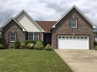 Robertson County Single Family Home For Sale: 157 Brandywine Ln
