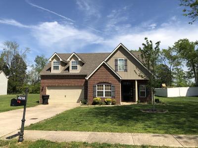 Murfreesboro Single Family Home For Sale: 4236 Princeton Oaks
