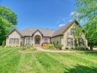 Gallatin Single Family Home For Sale: 161 Hidden Cove Ct