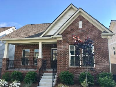 Nolensville Single Family Home For Sale: 519 Pleasant Street #130