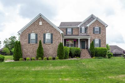 Mount Juliet Single Family Home For Sale: 108 Augusta Dr