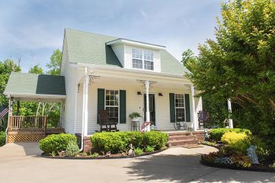 Pulaski Single Family Home For Sale: 145 Eastridge Dr