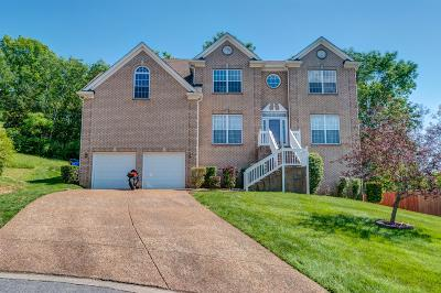 Davidson County Single Family Home For Sale: 1504 Whetstone Ct