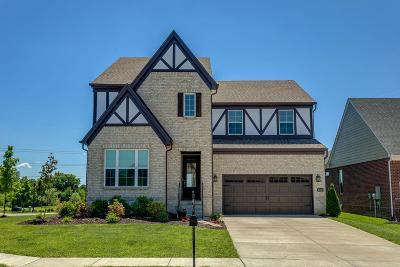 Mount Juliet Single Family Home For Sale: 2001 Oliver Dr