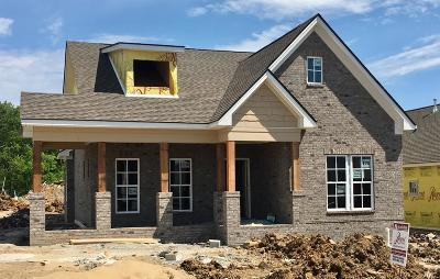 Nolensville Single Family Home For Sale: 1596 Winding Creek Drive #178