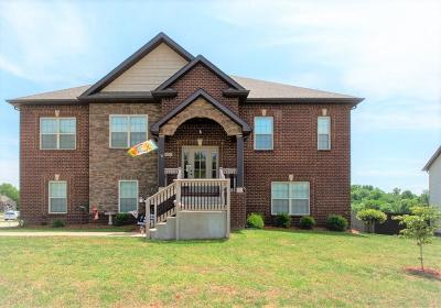 Clarksville Single Family Home For Sale: 1202 Sandstream Ct