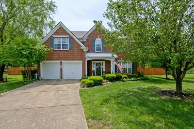 Mount Juliet Single Family Home For Sale: 1802 Lacie Ct