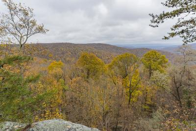 Altamont Residential Lots & Land For Sale: Roth Point Rd Lot 9