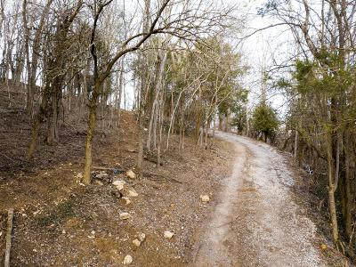 Davidson County Residential Lots & Land For Sale: 4604 Mountain View Dr Lot B