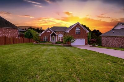 Mount Juliet Single Family Home Under Contract - Not Showing: 609 Windtree Pass