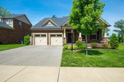 Mount Juliet Single Family Home For Sale: 2824 Lakeside Meadows Cir