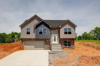 Palmyra Single Family Home For Sale: 5 Rich Ellen Ridge