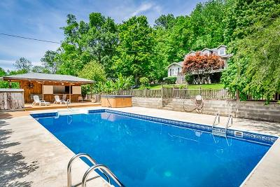 Grundy County Single Family Home For Sale: 173 David Hillis Rd