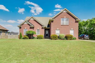 Mount Juliet Single Family Home For Sale: 311 Jewel Pl
