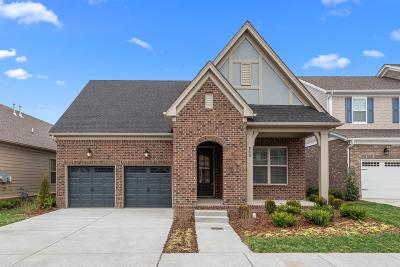 Hendersonville Single Family Home Under Contract - Not Showing: 111 Nighthawk Rd. Lot 347