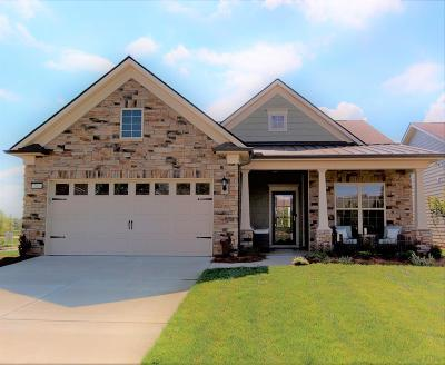 Spring Hill Single Family Home For Sale: 301 Carter Trail Lot 71