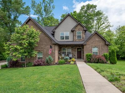 Cheatham County Single Family Home For Sale: 210 Suesand Ct