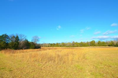 Lebanon Residential Lots & Land Under Contract - Not Showing: 2 Vesta (Tract 2)