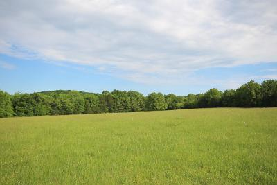 Murfreesboro Residential Lots & Land For Sale: 4616 Halls Hill Pike