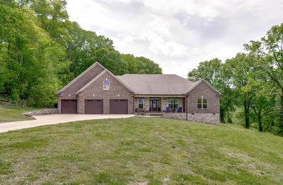 Hampshire Single Family Home For Sale: 4003 Catheys Creek Rd