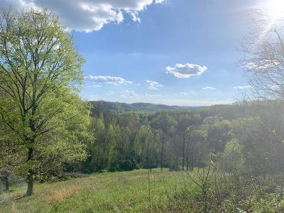 Woodbury TN Farm For Sale: $199,000