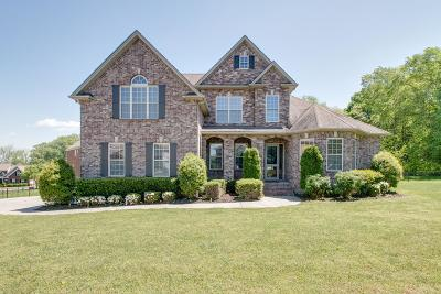 Spring Hill Single Family Home For Sale: 3015 Burnley Ct