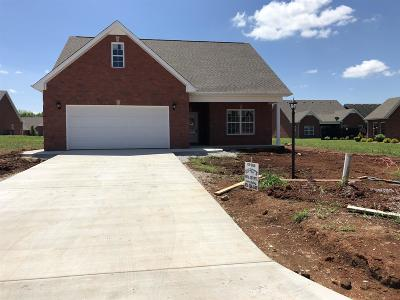 Winchester Single Family Home For Sale: 391 Chase Cir