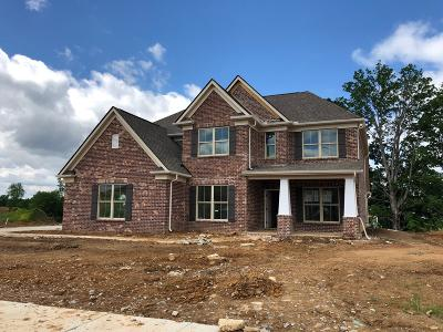 Spring Hill Single Family Home For Sale: 1098 Brixworth Dr (Lot 422)