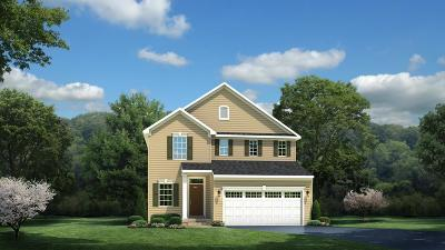 Spring Hill Single Family Home For Sale: 3093 Boxbury Ln Lot 87