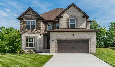 Montgomery County Single Family Home For Sale: 3169 Porter Hills Lot 9