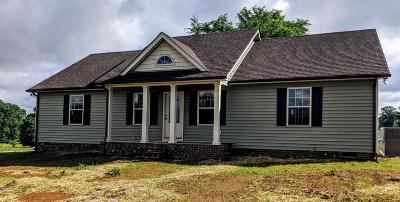 Sumner County Single Family Home For Sale: 1300 Mount Olive Road