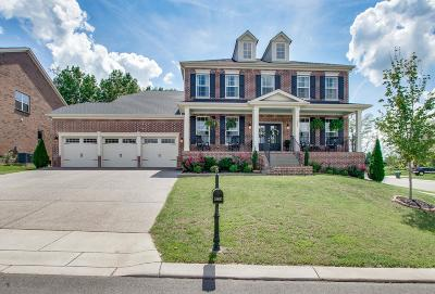 Mount Juliet Single Family Home For Sale: 449 Valley Spring Dr
