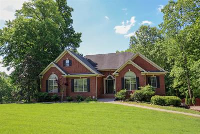 Cheatham County Single Family Home For Sale: 2376 Pleasant View Rd