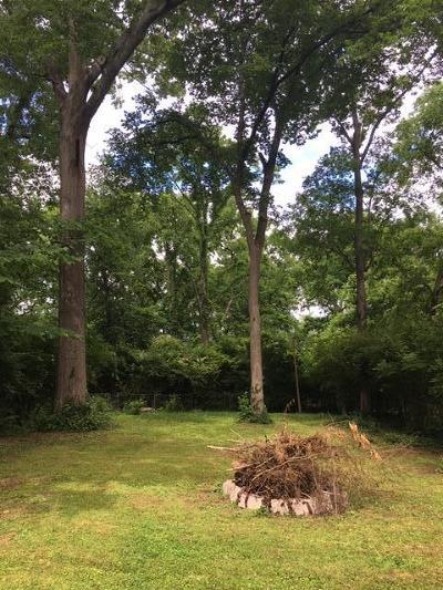 East Nashville Single Family Home For Sale: 1349 Cardinal Avenue