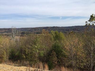 Pulaski Residential Lots & Land For Sale: 460 Wiskey Way