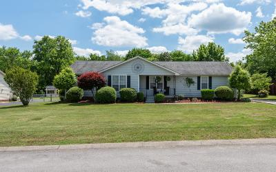 Mount Juliet Single Family Home For Sale: 806 N Water View Terrace
